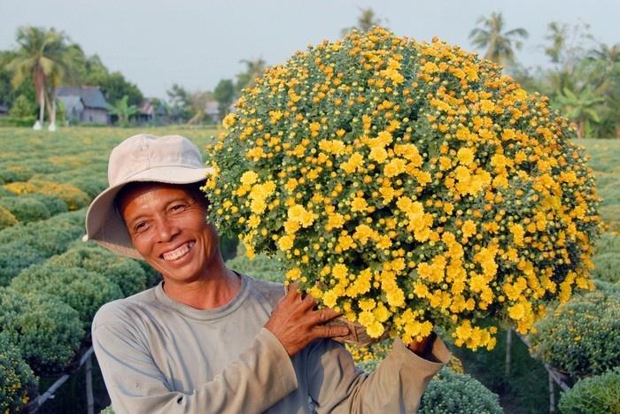 Những chậu hoa cảnh được trồng và cắt tỉa cẩn thận (Ảnh: ST)