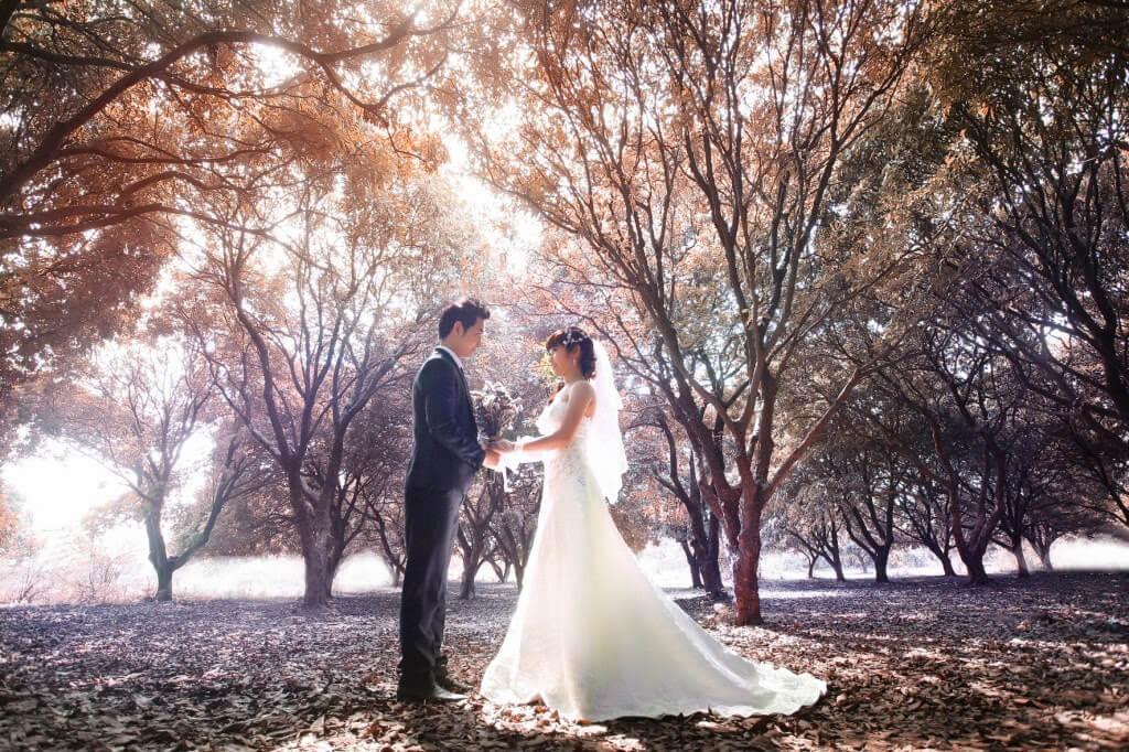 Chụp ảnh cưới ở vườn nhãn Vĩnh Tuy (ảnh sưu tầm)