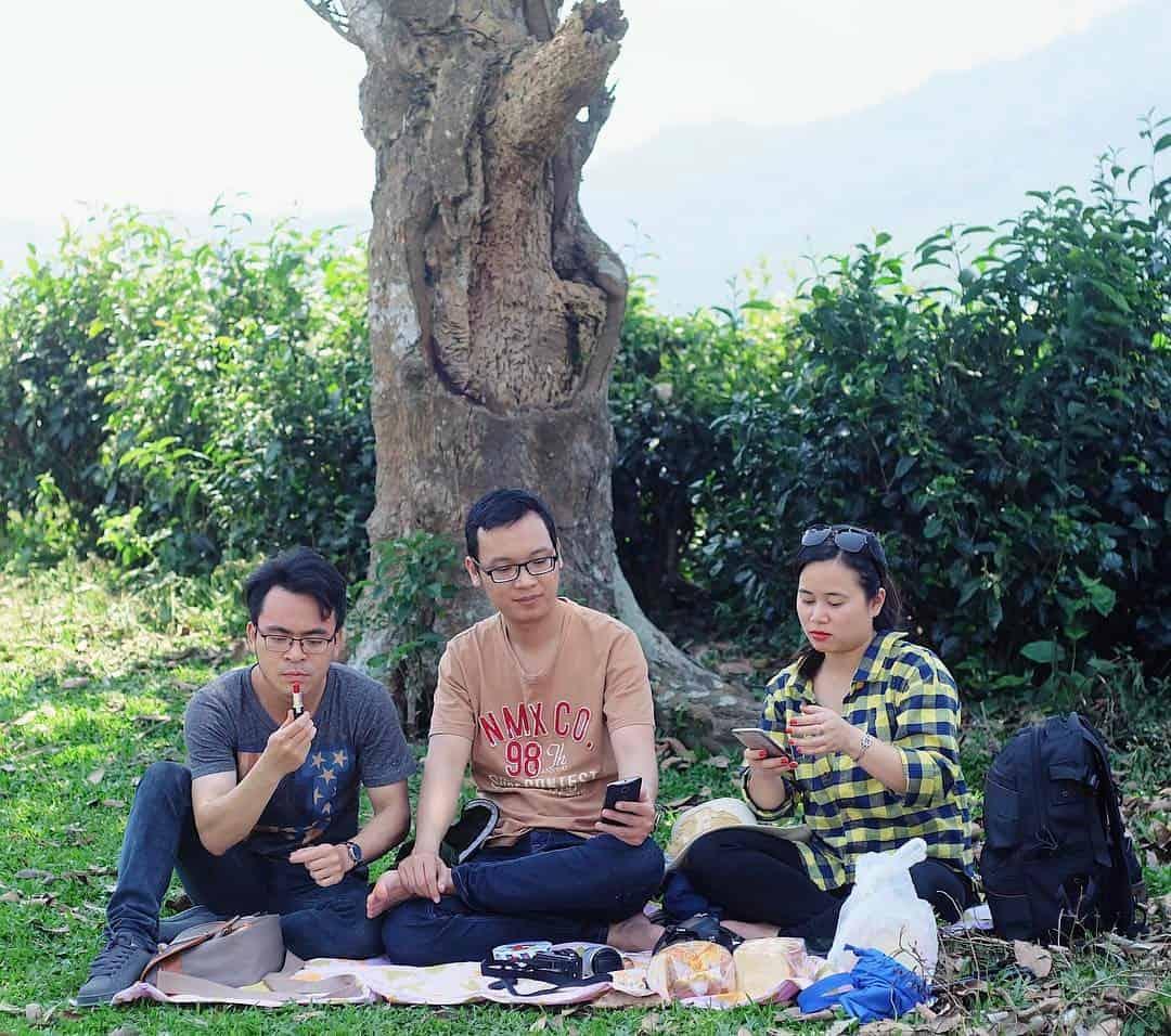 Đi picnic ở đồi chè (Ảnh: ST)