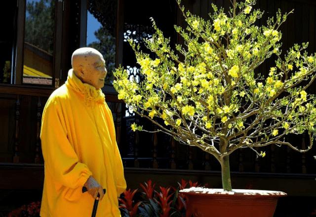Hòa thượng Tôn Sư Thượng Thanh Hạ Từ - Thiền viện Trúc Lâm Bạch Mã