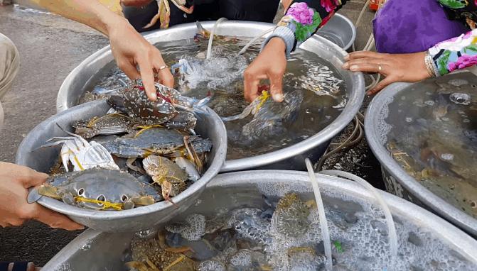 Kết quả hình ảnh cho Chợ hải sản