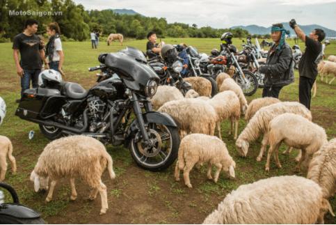 Đường chạy vào đồi cừu đường đất cát, xe mô tô tổ chức trổ tài cũng rất thú vị
