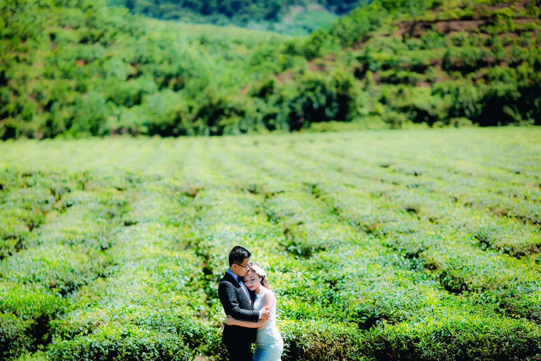 Chụp ảnh cưới Đồi chè Đông Giang (Ảnh ST)