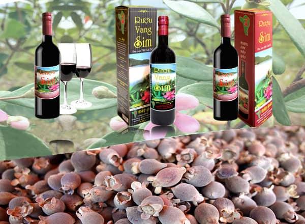 Rượu sim Phú Quốc là những điểm du lịch Phú Quốc rất thu hút (Ảnh: ST)
