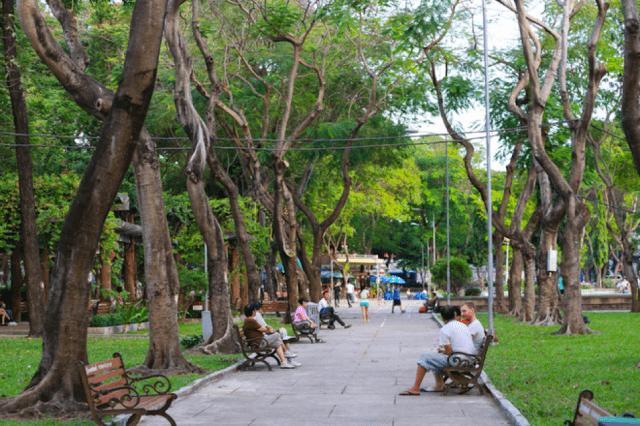 Hình ảnh công viên Lê Văn Tám Hồ Chí Minh