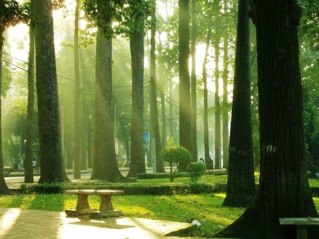 Công viên Tao Đàn trong nắng