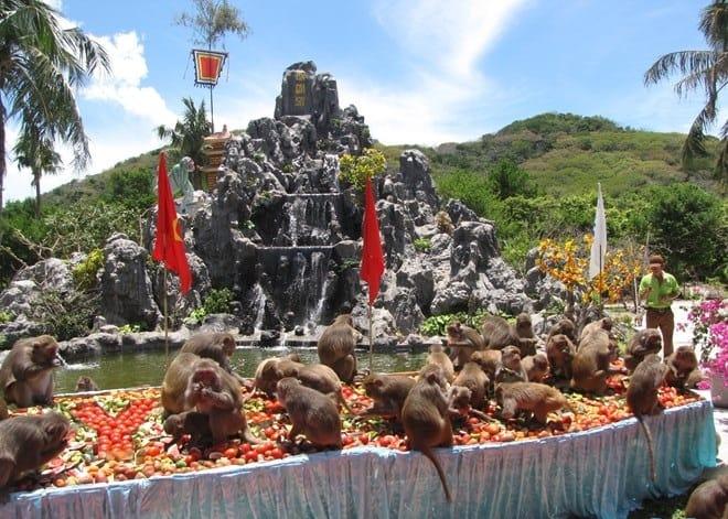 Vương quốc đảo khỉ (Ảnh ST)