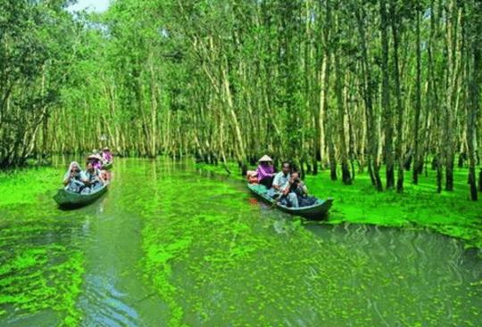 Du lịch sông nước ở miền Tây (Ảnh ST)