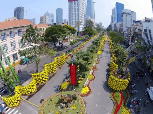 Đường hoa Nguyễn Huệ nở đẹp khi nhìn từ xa