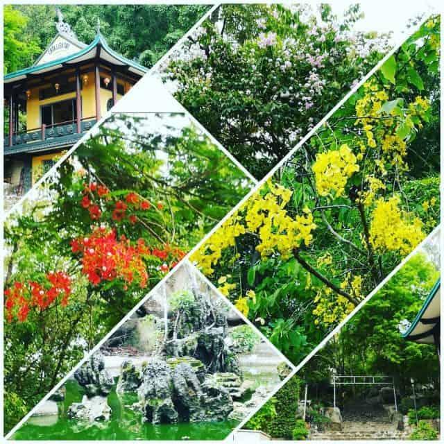 Thiên nhiên phong phú ở núi Thị Vải