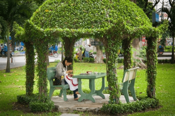 Chòi cây xanh mát trong công viên Hoàng Văn Thụ
