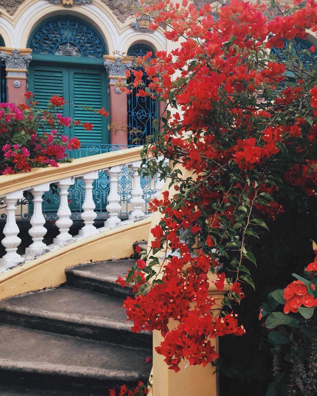 """Ngôi nhà này còn được biết đến như """"Vườn hoa Bình Thủy"""""""
