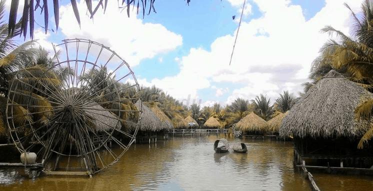 Vườn sinh thái Hoa Súng (Ảnh ST)