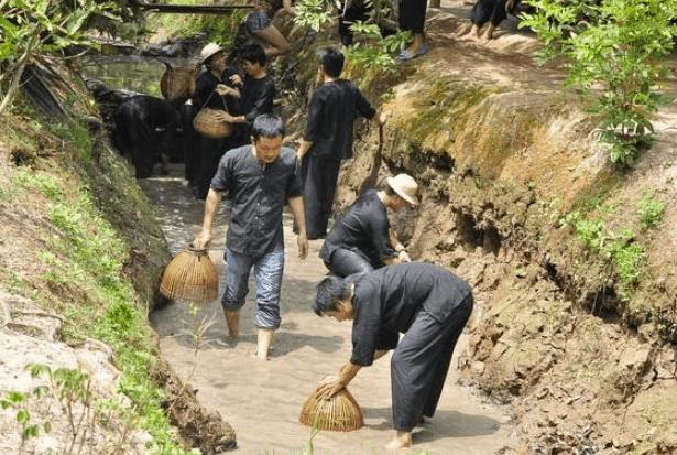 Trò tát mương bắt cá ở Phong Điền (Ảnh ST)