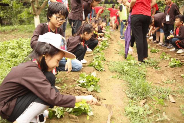 Lớp học tập làm nông dân