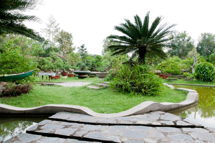 Trong khu du lịch được trồng rất nhiều cây xanh