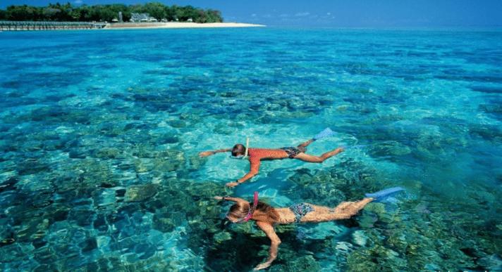Ngắm san hô dưới nước biển trong xanh tại Côn Đảo