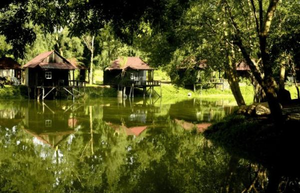 Những ngôi nhà gỗ nằm giữa thiên nhiên xanh mát