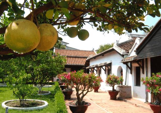 Vườn tược xung quanh khu di tích
