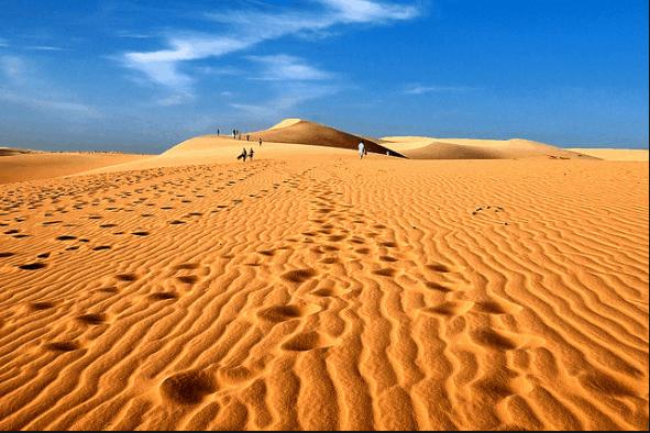 Màu vàng của đồi cát