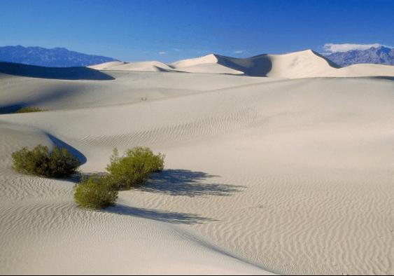 Màu trắng của cát