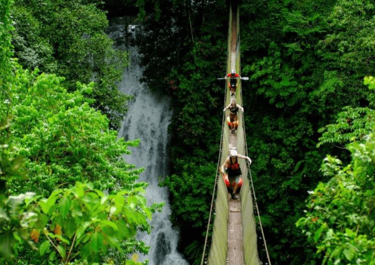 Khám phá rừng nguyên sinh Phú Quốc