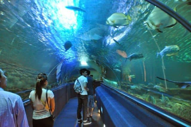 Top 10 địa điểm du lịch Nha Trang 2019 mà bạn nhất định phải đến 1