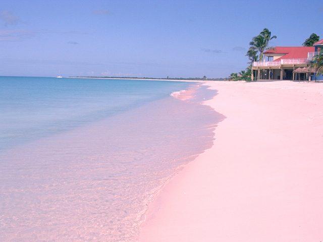 biển hồng