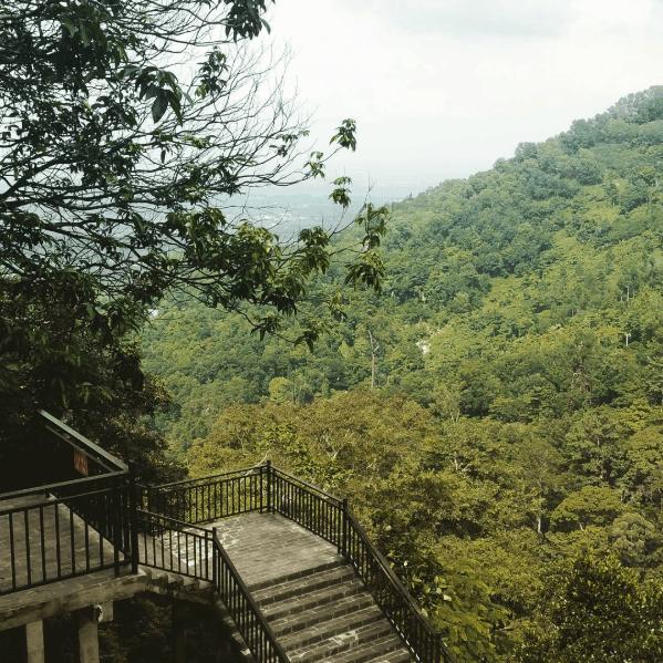 Bậc thang đá là nơi check in quen thuộc của các bạn trẻ trên đường lên chùa Bửu Quang