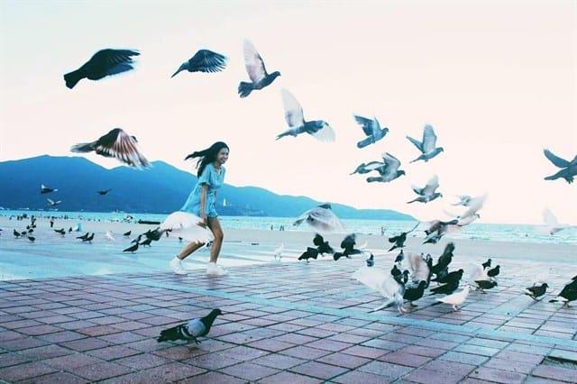 Hàng nghìn con bồ câu tung cánh rợp bóng trời (Ảnh: ST)